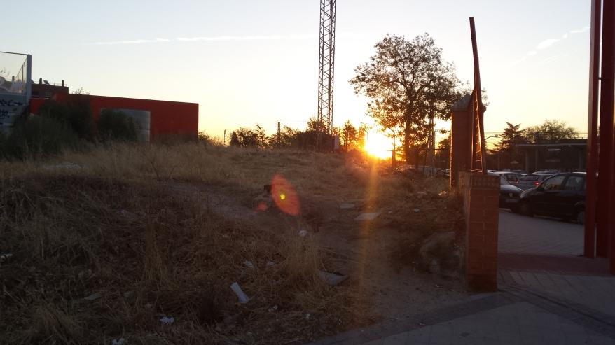El sol sale por donde quiere haciéndose paso si o si