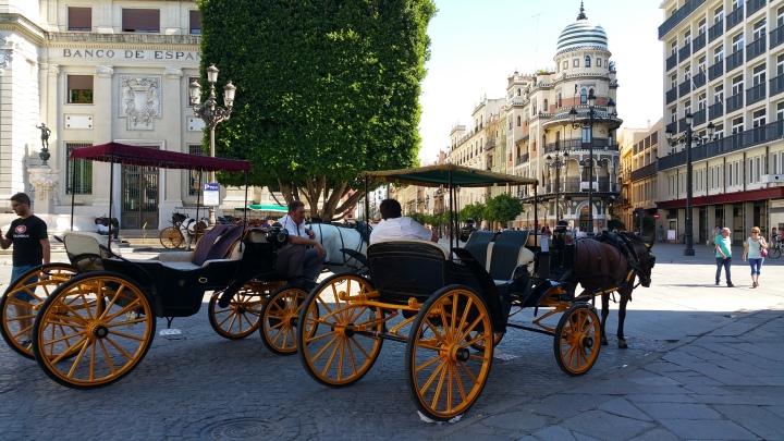 Carruajes en Sevilla