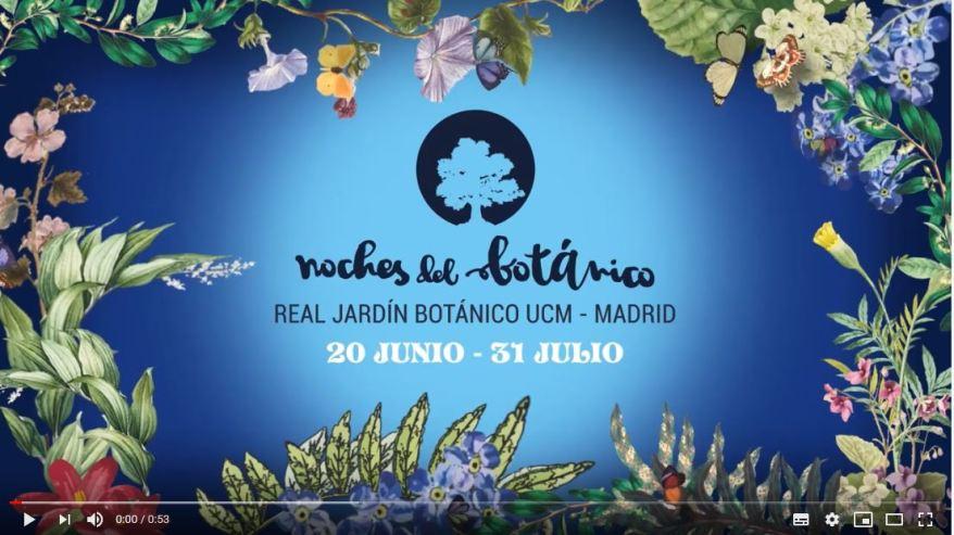 Noches Del Botánico-Madrid 2019-0